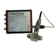 hochwertiger Explosionsgeschützter Durchflussmesser TrigasDM
